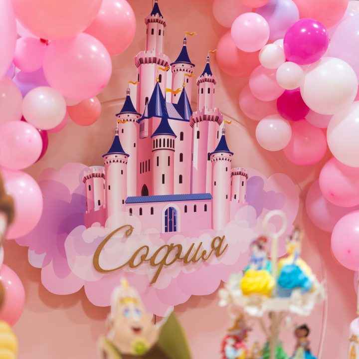 Disney Princesses Theme Birthday Party